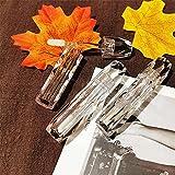 FANGLMY Botella contenedor 10/30 / 50pcs Tubos de Labios Transparentes de Alto Grado Herramientas de Maquillaje de Viaje Recipientes cosméticos Vacío Lip Block Balm Botellas Artículos de Viaje