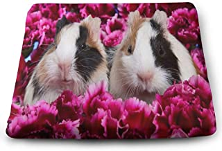 Ladninag Seat Cushion Pink Flowers Cuties Animal Guinea Pig Chair Cushion Offices Butt Chair Pads for Cars/Outdoors/Indoor/Kitchens/Wheelchairs