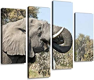 African elephant bull drinking, Moremi NP, Botswana Canvas Print Artwork Wall Art Pictures Framed Digital Print Abstract P...