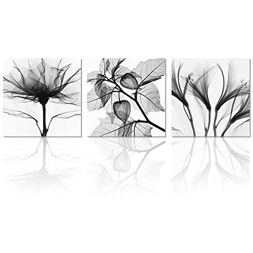 Black And White Floral Framed Prints Amazon