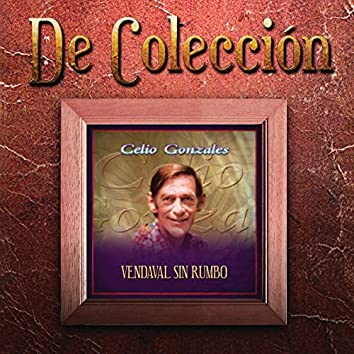 Vendaval Sin Rumbo (De Colección)