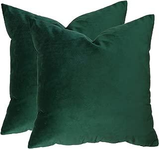 Best velvet green pillow Reviews