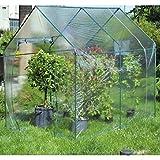 Verdemax Narciso Funda Recambio para Invernadero 2614, Verde Agua, 5x30x20 cm