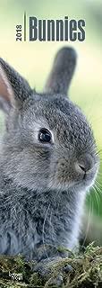 slimline rabbit