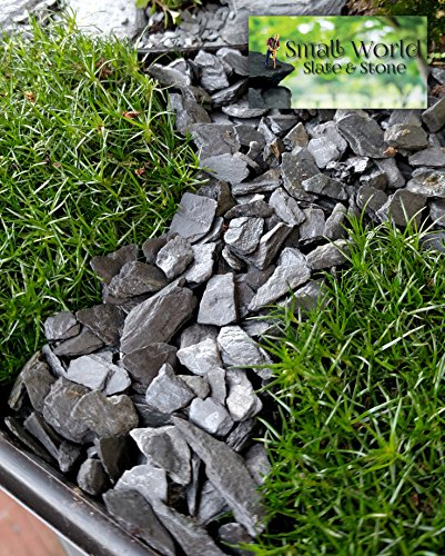 Natural Slate Stone - 1/4 to 1/2 inch Slate Gravel for Aquascaping Aquariums, Miniature or Fairy Garden, Aquarium, Model Railroad & Wargaming (1)