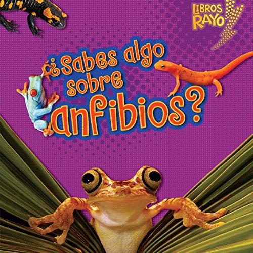 ¿Sabes algo sobre anfibios? [Do You Know About Amphibians?] copertina