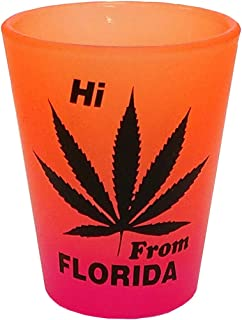 HI FROM FLORIDA - LEAF - SHOT GLASS COLLECTABLE SOUVENIR NOVELTY GIFT 20OP