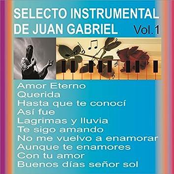 Selecto Instrumental de Juan Gabriel, Vol. 1