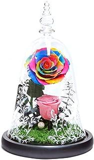 永遠の命の花はクリスマスバレンタインデー誕生日ギフト、ライト付き美女と野獣バラ用ガラスドームでバラの花実永遠のバラのプリザーブドフラワー (マルチカラ)