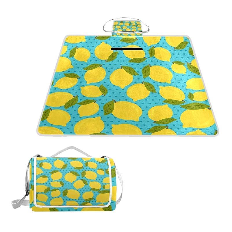 ALAZA Lemon Large Picnic Blanket Rug,57
