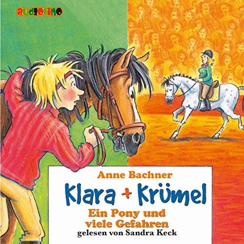 Ein Pony und viele Gefahren Titelbild