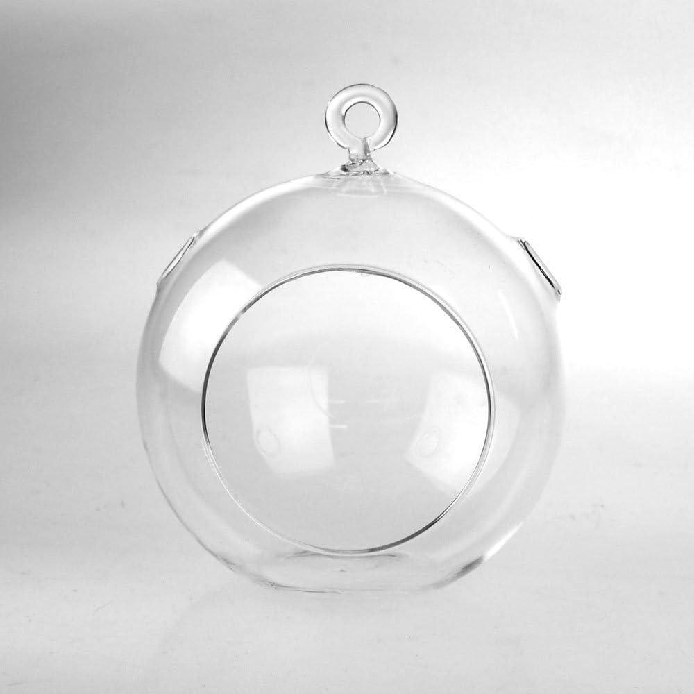Clear Glass Globe Terrarium Air Cheap SALE Start Plant Holder Height 5-In Ranking TOP16 Candle
