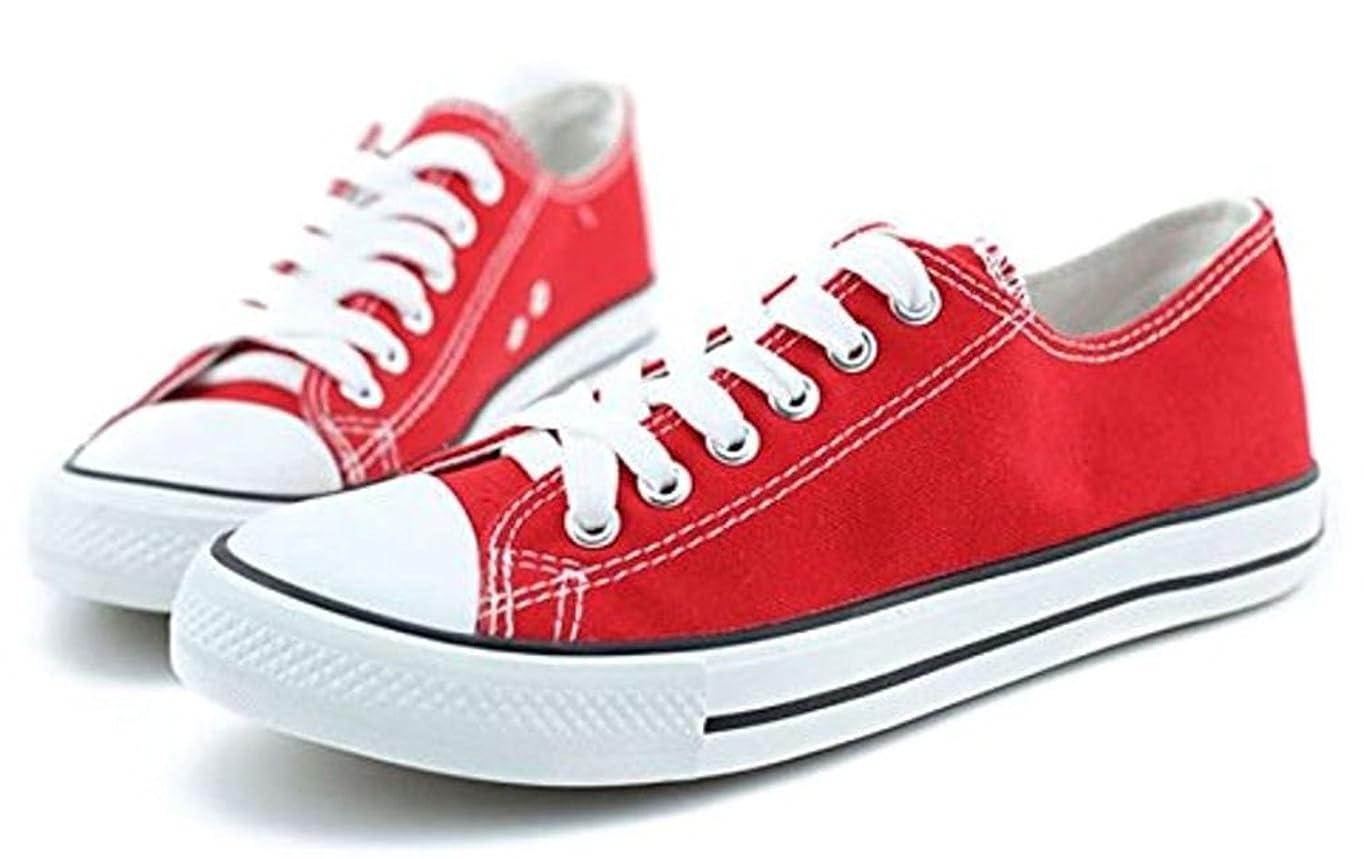 たぶん静的平らにする[ソータネット] スニーカー スリッポン カジュアルシューズ 運動靴 軽量 キャンバス ローカット シンプル 5色展開