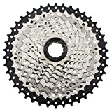 CYSKY 10 Speed Cassette 11-42 Cassette 10 Speed Fit for Mountain Bike, Road Bicycle, MTB, BMX, SRAM Shimano Sunrace 10 Speed Freehub Body (Light Weight)