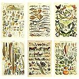 Meishe Art Poster Plakate Drucken Plakatdruck Kunstdrucke