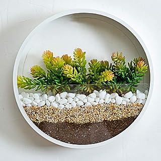 comprar comparacion RRSHUN - Macetero redondo de cristal, para pared, diseño de flores, metal, para interior, vertical, para colgar en la pare...