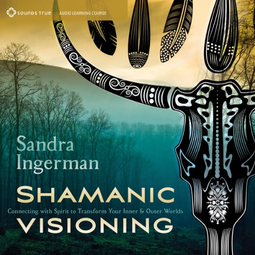 Shamanic Visioning cover art