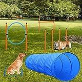 Tresbro Agility para perro, kit obstáculo, túnel para perro,...