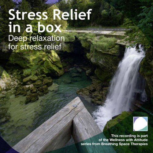 Stress Relief in a Box  By  cover art