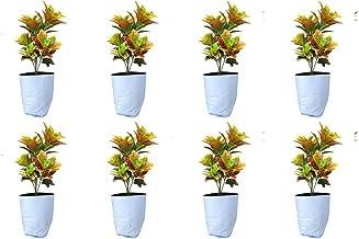 Rochfern Grow Bag,Extra Large,(Pack of 8 Grow Bags) 100% Virgin Polyethylene, (60 x 34 x 20Cms.) UV Treated