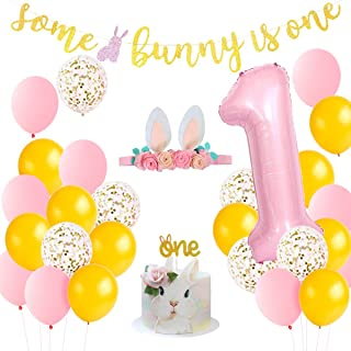 زينة عيد الميلاد الأول للأرانب بعض الأرانب هي لوازم حفلات عيد ميلاد واحدة للربيع وعيد الفصح طفل دش الأرنب حفلة للبنات مع ل...