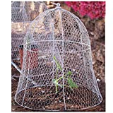 HEIDI & OLAV 4 Pack 14 Inches Squirrel Proof Wire Cloche for Plants Metal Plant Cover Cage Garden Animal Protection Metal Plant Cage Protector Dome Rabbit Bunny Fence Gardening Decor Guard