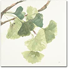 Gingko Leaves I Light by Chris Paschke, 18x18-Inch Canvas Wall Art