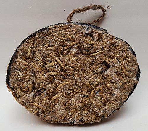 AQUARISTIK-PARADIES Halbe Kokosnuss gefüllt mit Fettfutter, Samenmischung, Mehlwürmer und Insekten für Wildvögel
