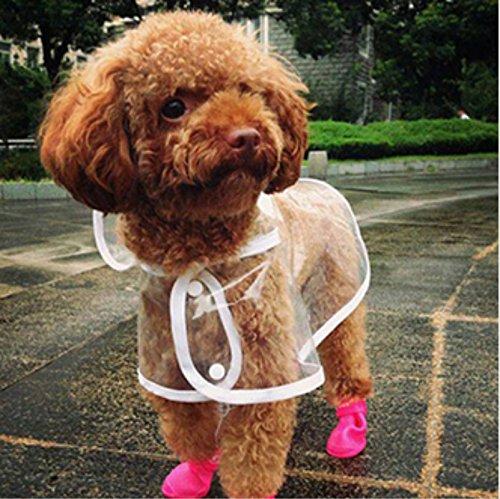 Cosanter Transparent Regenmantel Hund Haustier Regen Mäntel wasserdichte Welpen Regenmäntel Größe L Rückenlänge 35 cm