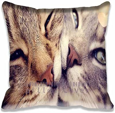 18x18Inch Cats Love Decorative Home Square Throw Pillow Covers