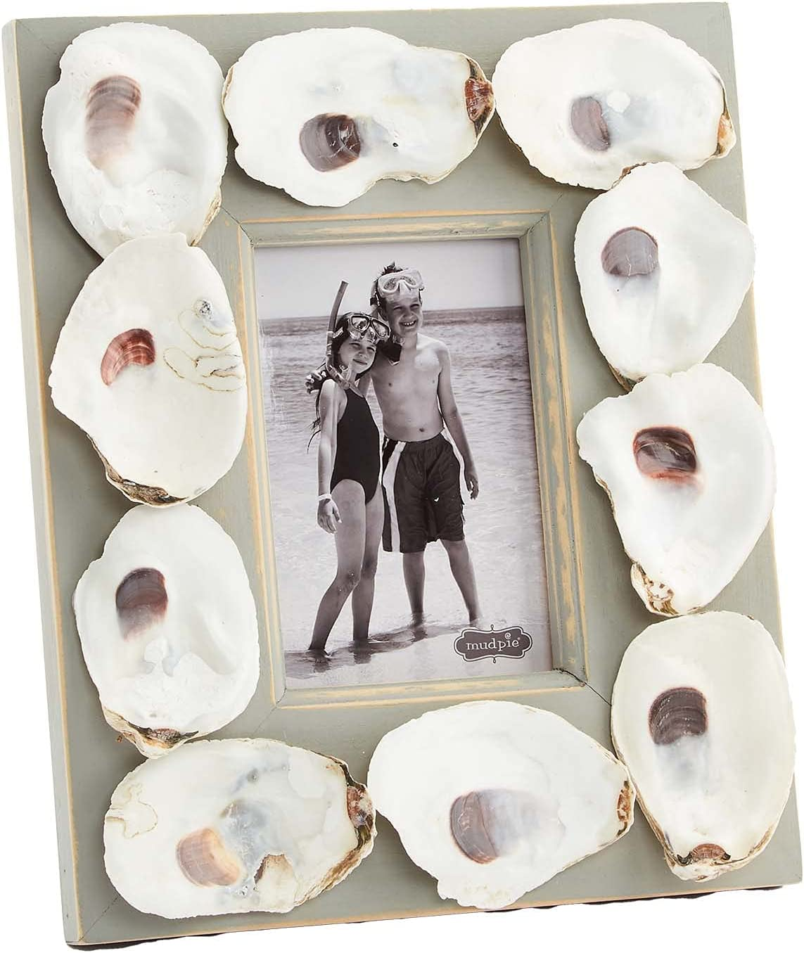 Excellent Oyster 70% OFF Outlet Shell Shadow Box Frames