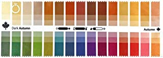 Handy Fabric Color Swatch Dark (True) Autumn with 30 Colors for Color Analysis and Image Consulting