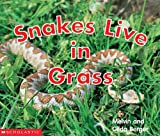 Snakes Live in Grass