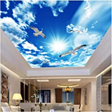 xbwy Custom Large Ceiling Zenith Mural Wallpaper 3D Stereo Blue Sky White Clouds Dove Nature Landscape Photo Mural Ceiling Wallpapers-150X120Cm