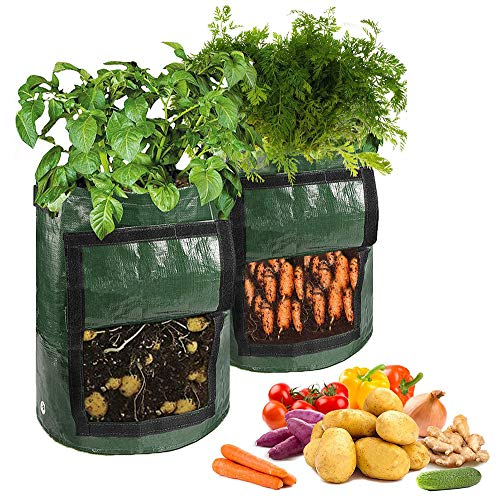 Recopilación de Ollas para verduras disponible en línea para comprar. 2