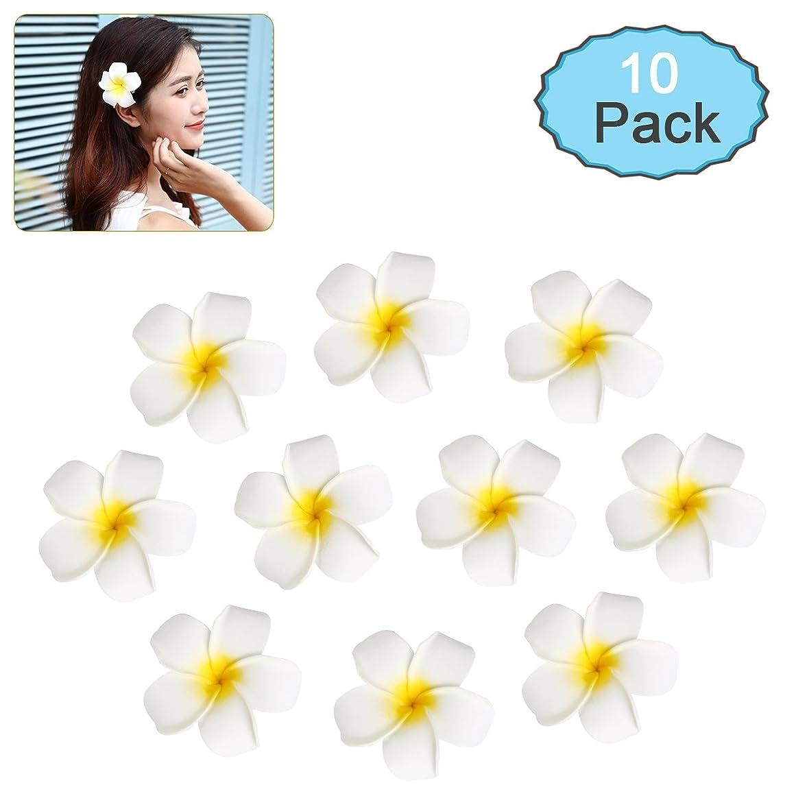 役に立たない拒絶居間Frcolor お花 ヘアピン 花髪クリップ ヘアアクセサリー プルメリア 10本