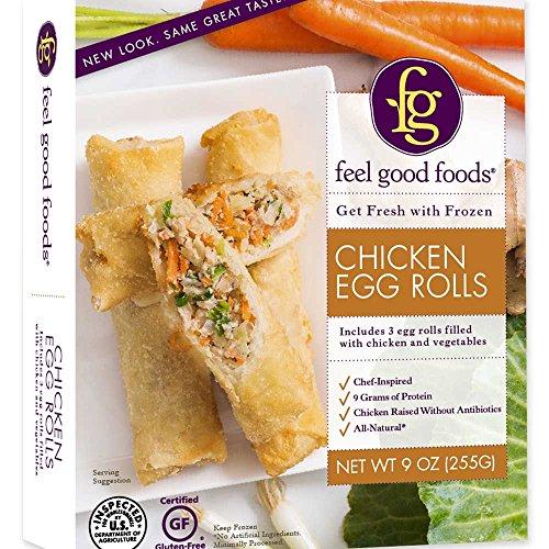 FEEL GOOD FOODS Egg Rolls Gluten Free Chicken, 9 Ounce (Pack of 9)
