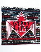Clich'e(クリッシェ)DVD Gypsy Life