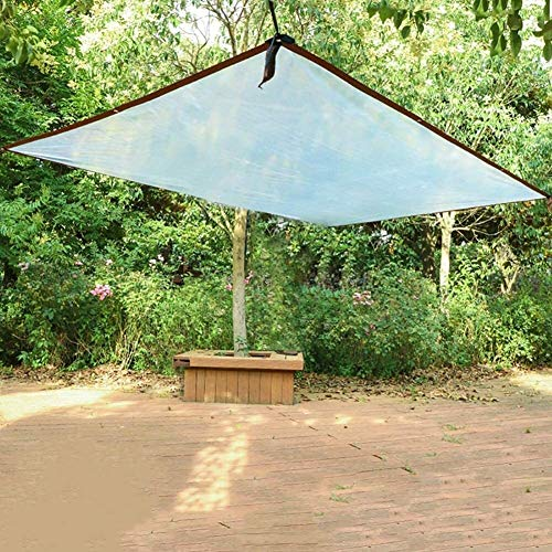 Glass Clear Tarpaulin Tarpaulin Transparent Polyethylene Waterproof Windproof Greenhouse Garden Agriculture Flower Picnics Camping Tarp, 100 G/M² (Size : 5mx5m)