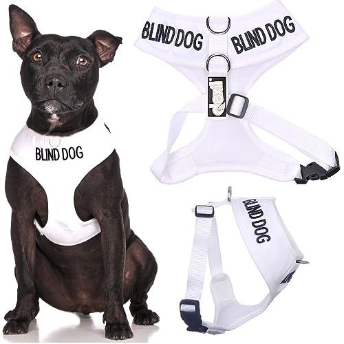 BLIND DOG: Amazon.co.uk