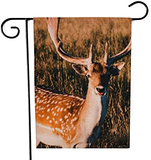 Shorping Farm Garden Flag, Fall Garden Flag 12.5X18Inch Xmas House Yard Flag Deers in Phoenix Park During The Golden Hour Portraits for Holiday and Seasonal Garden Flag Yards Flags