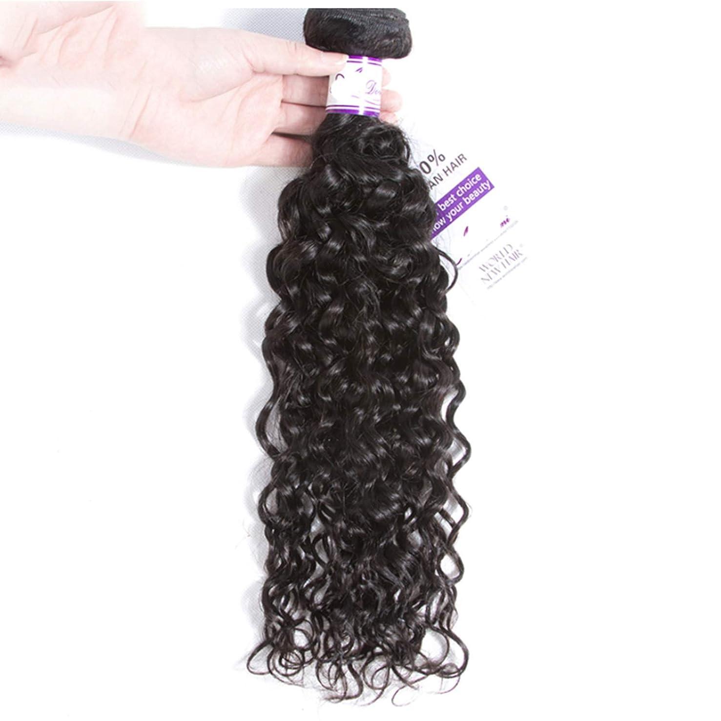 廃棄野望線形ペルーの水の波束100%人間の髪の毛の織り方ナチュラルカラー非レミーの毛延長8-28インチ かつら (Stretched Length : 20inches)