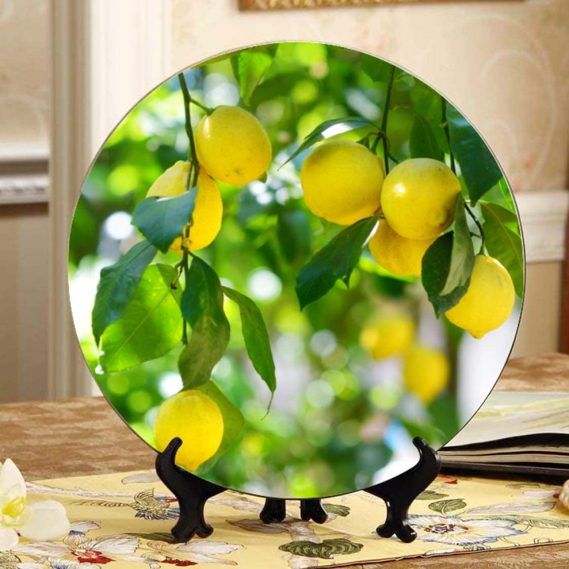 Outlet ☆ Free Shipping Yellow Lemons On Lemon Tree Plates Displays Japan Maker New Decorator Plate Home