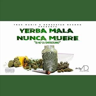Yerba Mala Nunca Muere (Si No la Enrrolamo) [Explicit]