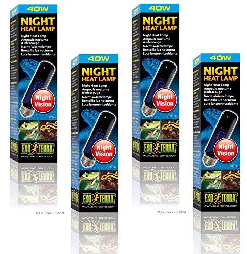 (4 Pack) Exo Terra Night-Glo Moonlight Lamp, 40 Watt