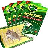 Trampa de ratón profesional de Zoore, adhesivo de ratón fácil de usar, paquete de 4