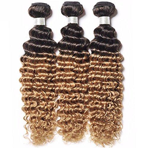 8A Soft Brazilian Deep Wave Ombre Human Hair Bundles 2 Tone Dark Root to Honey Blonde Virgin Hair Extension 1B/27 Ombre Deep Curly Weave Human Hair 3 Bundles (1B/27, 22 22 22)