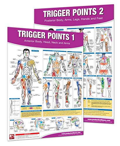 trigger point wall chart - 1