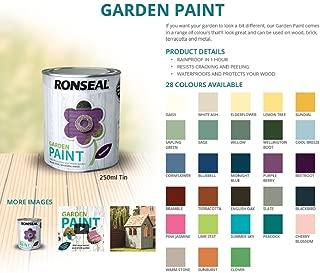 Ronseal Garden Paint 250ml, Charcoal Grey