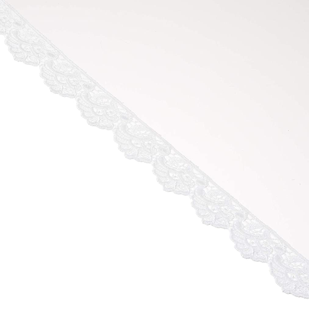 Decorative Trimmings White Fan Edge Venice Lace Trim 7/8